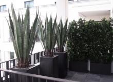 Terrassenbegrünung-Kunstpflanzen
