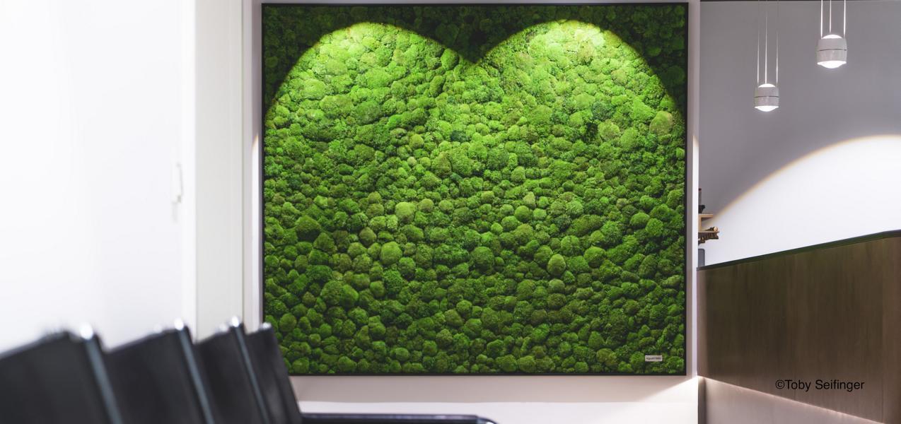 Vertikale Begrünung vertikalbegrünung mit moos und pflanzenwände ohne pflege