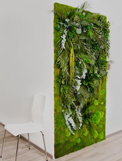 Wandbegrünung vertikalbegrünung mit moos und pflanzenwände ohne pflege