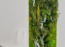 Wandbegrünung-Mooswand