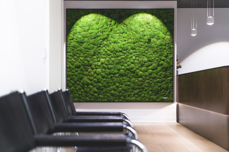 Naturidentische Blatt- und Blühpflanzen künstlich. Kunstpflanzen für ein wohlfühlendes Raumklima. Kaum von den natürlichen Vorbildern zu unterscheiden.