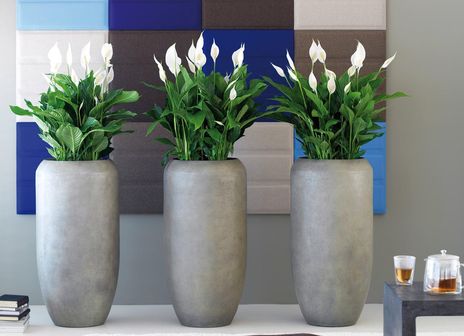 Pflanzengefässe