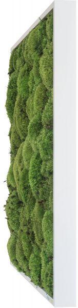 stylegreen kugelmoosbild 140x40cm dekohaus innenbegr nung und aussenbegr nung mit. Black Bedroom Furniture Sets. Home Design Ideas