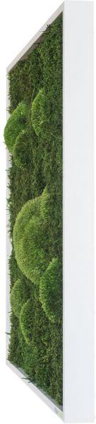 stylegreen moosbild 140x40cm dekohaus innenbegr nung und aussenbegr nung mit exklusiven. Black Bedroom Furniture Sets. Home Design Ideas