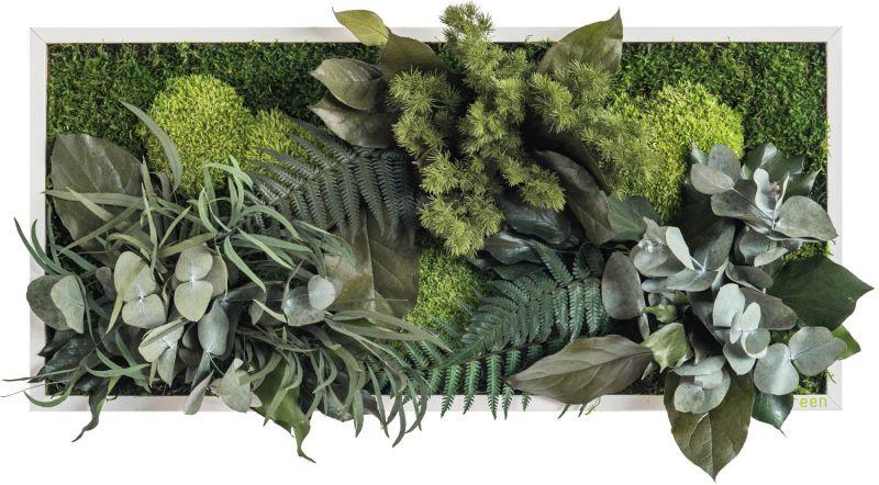 Stylegreen Pflanzenbild 27x57cm Dekohaus Innenbegrünung Und Aussenbegrünung Mit Exklusiven Kunstpflanzen