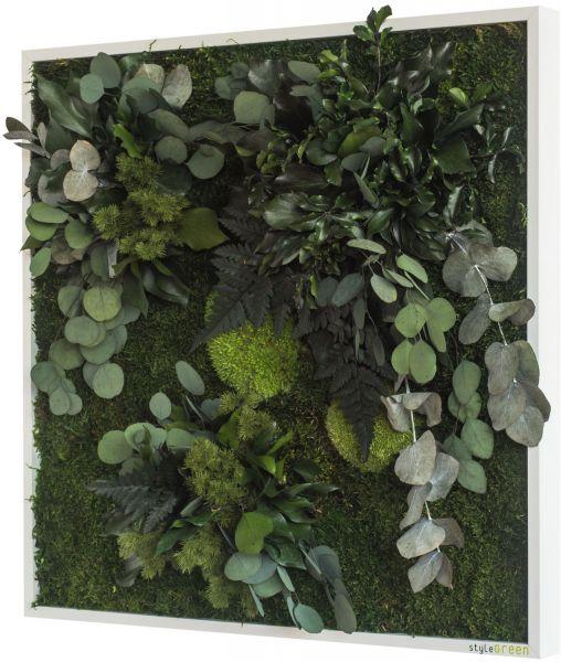 stylegreen pflanzenbild 55x55cm dekohaus innenbegr nung und aussenbegr nung mit exklusiven. Black Bedroom Furniture Sets. Home Design Ideas