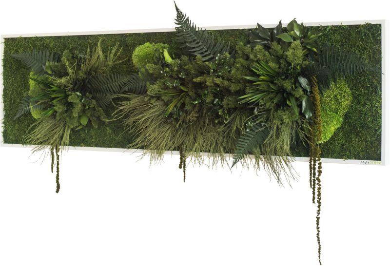 stylegreen pflanzenbild 140x40cm dekohaus innenbegr nung und aussenbegr nung mit. Black Bedroom Furniture Sets. Home Design Ideas