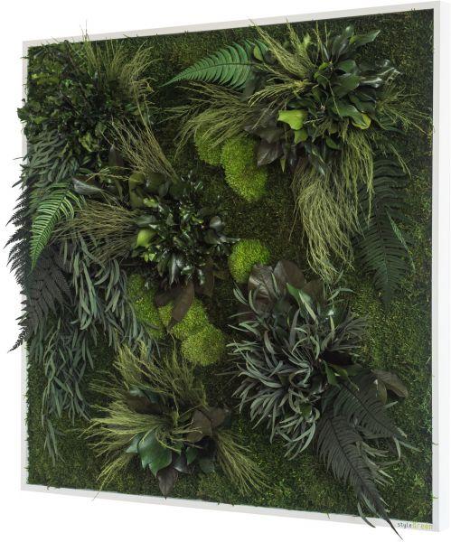 stylegreen pflanzenbild 80x80cm dekohaus innenbegr nung und aussenbegr nung mit exklusiven. Black Bedroom Furniture Sets. Home Design Ideas