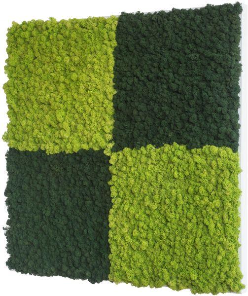 stylegreen islandmoosbild 80x80cm dekohaus innenbegr nung und aussenbegr nung mit. Black Bedroom Furniture Sets. Home Design Ideas