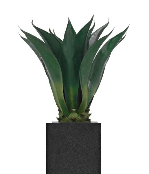 wetterfeste agave corta dekohaus innenbegr nung und aussenbegr nung mit exklusiven kunstpflanzen. Black Bedroom Furniture Sets. Home Design Ideas