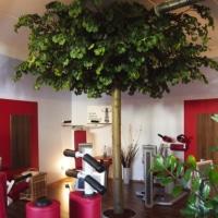 Begrünung Ladenlokal mit einem grossen Gynko Kunstbaum.