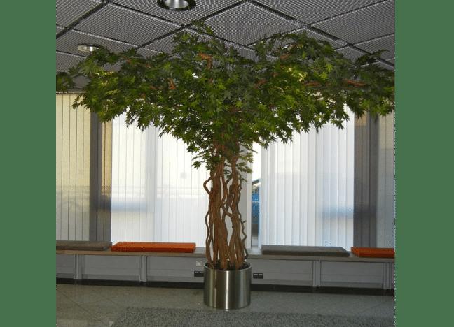 Ahorn Kunstbaum in einem Büro als Innenraumbegrünung.