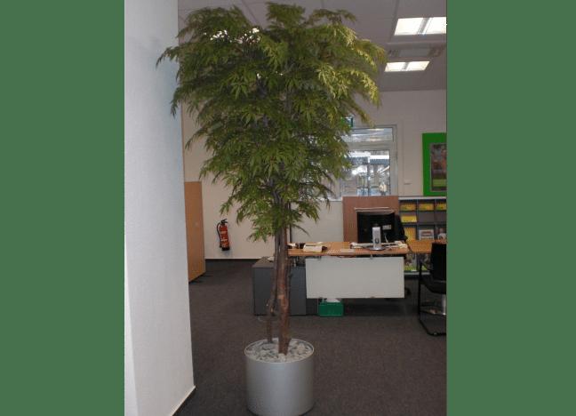 Bürobegrünung mit einem künstlichen Ahorn Kunstbaum.