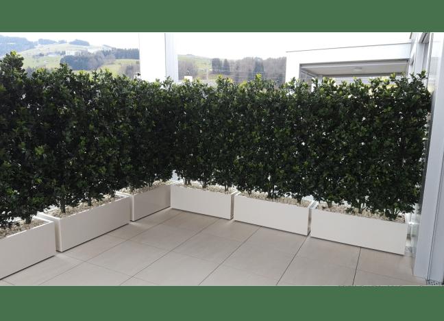 Terrassengestaltung mit künstlichen Hecken als Sichtschutz.