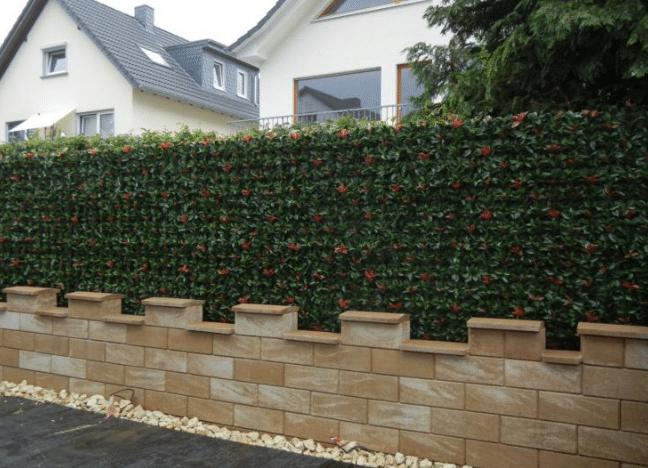 Gartengestaltung mit wetterfeste Photinia Hecke als Sichtschutz.
