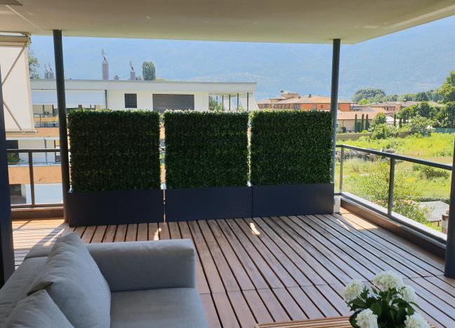 Terrassengestaltung mit winterharte Buchs Hecken als Sichtschutz.