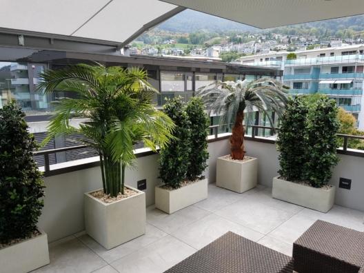 wetterfeste kunstpflanzen premium kunstpflanzen dekohaus ag. Black Bedroom Furniture Sets. Home Design Ideas