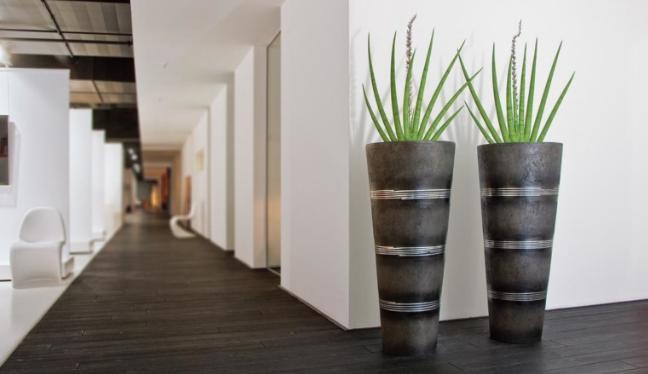 Künstliche Pflanzen in edlen Gefässe, die in einem Ausstellungsraum stehen.
