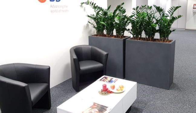 Hochwertige Kunstpflanzen in grauen, hohen Töpfen, die als Raumteiler in einem Büro dienen.