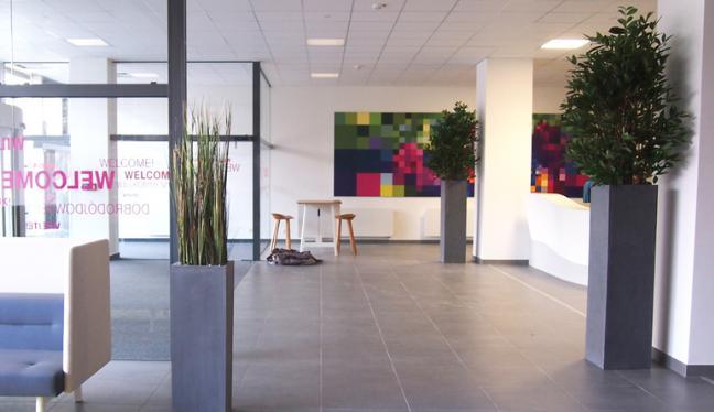 Ein Ladenlokal dekoriert mit hochwertigen Kunstpflanzen und Kunstbäume.