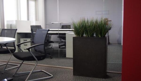 Hochwertige Kunstpflanzen in einem schwarzen, hohen Pflanzgefäss, das als Raumteiler in einem Büro dient.