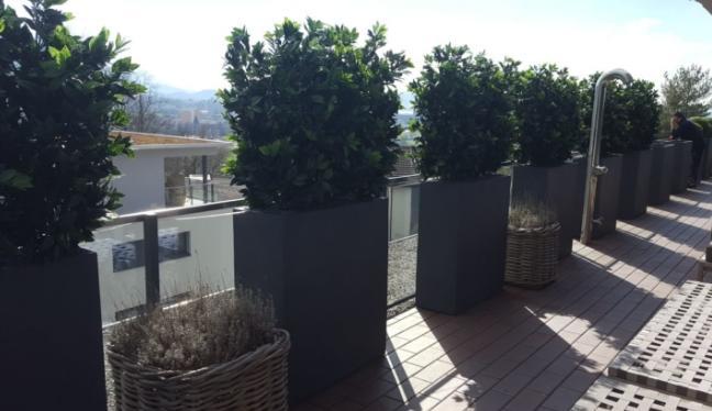 Terrassengestaltung mit wetterfesten Kunsthecken im Aussenbereich.