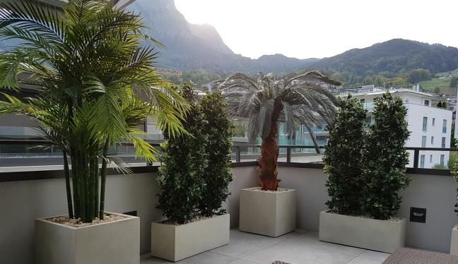Wetterfeste Kunstpflanzen und Kunsthecken auf einer Terrasse im Aussenbereich.