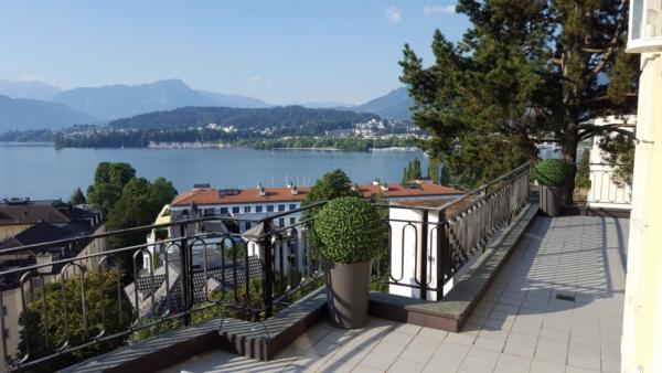 Buchskugeln Kunstpflanzen Outdoor auf Balkon.