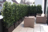 Sichtschutz Terrassengestaltung mit Heckenpflanzen und Töpfe.