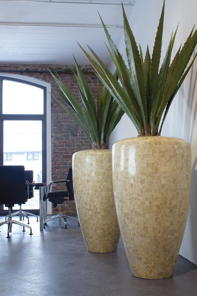 Innenraumbegrünung Büro mit grossen Pflanzgefässe und Pflanzen.