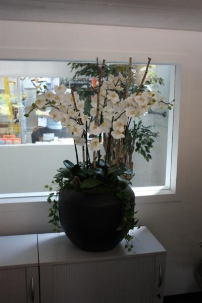Künstliche Orchideen arrangiert in einem Pflanzgefäss als Innendekoration in einem Büro.