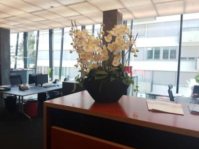 Innenbegrünung mit Kunstblumen Gesteck in Büro.
