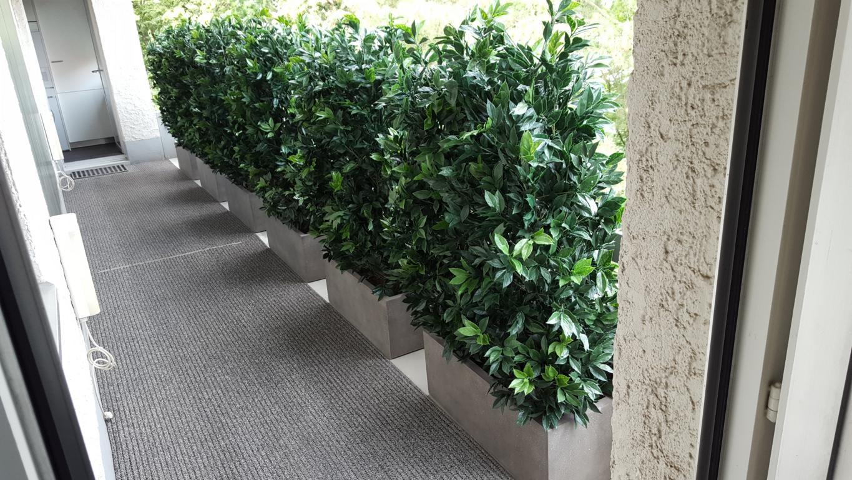 Immergrüne Kunsthecken als Sichtschutz.