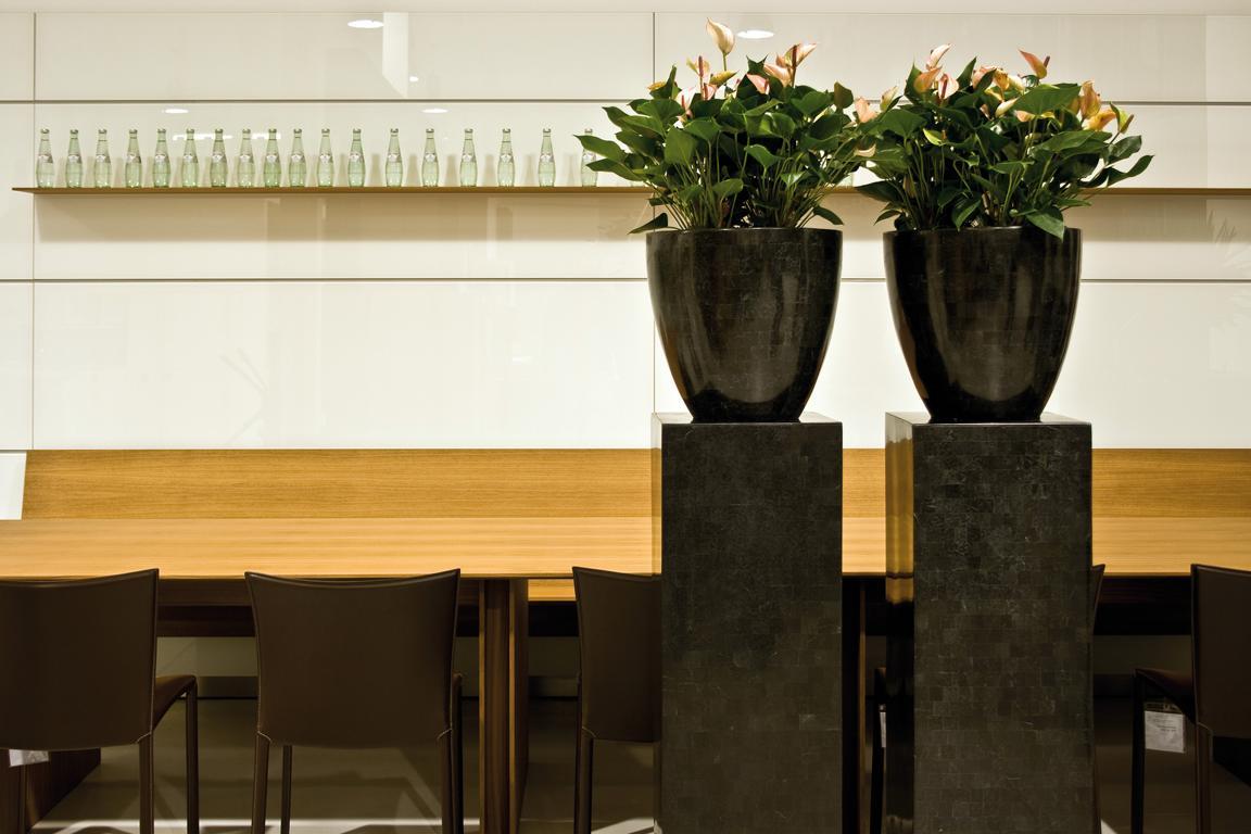 PFlanzen in Schale auf Pflanzsäule.