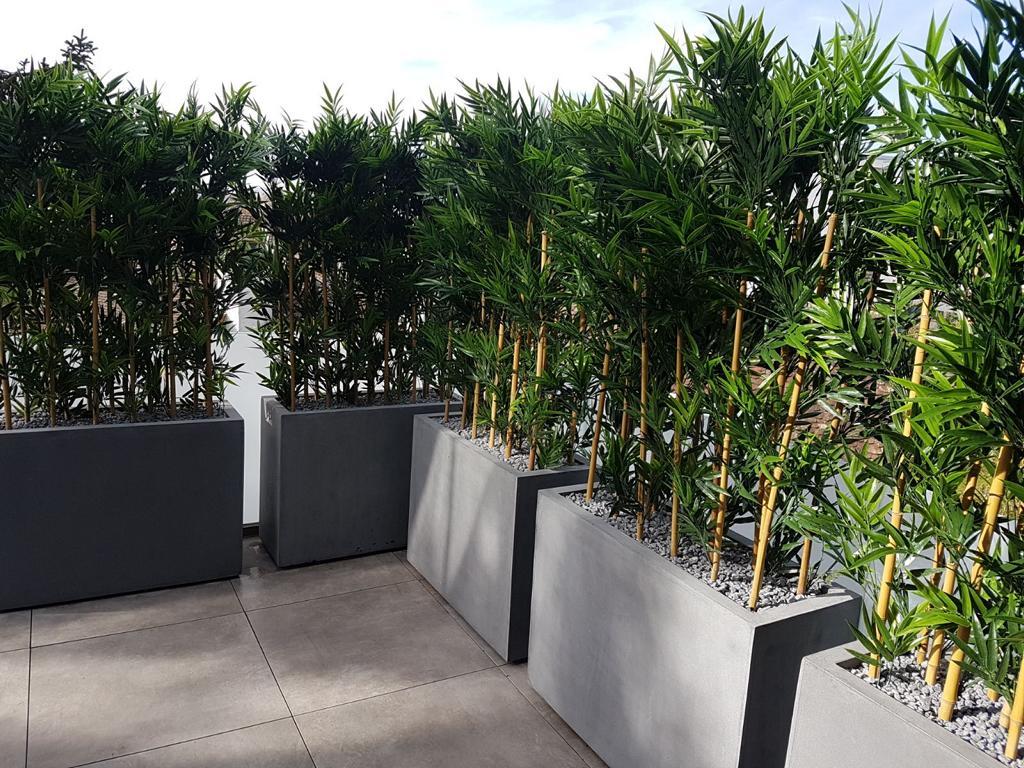 sichtschutz hecken bambus dekohaus innenbegr nung und aussenbegr nung mit exklusiven. Black Bedroom Furniture Sets. Home Design Ideas