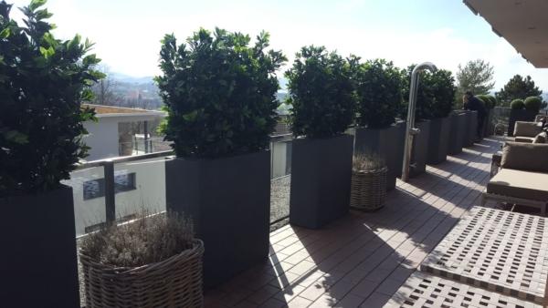 Künstliche Lorbeer Hecken als Sichtschutz auf einer Terrasse.