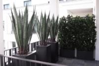 Terrassenbegrünung mit Kunstpflanzen für den Aussenbereich.