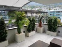 Terrassenbegrünung mit winterharten Pflanzen im Kübel.