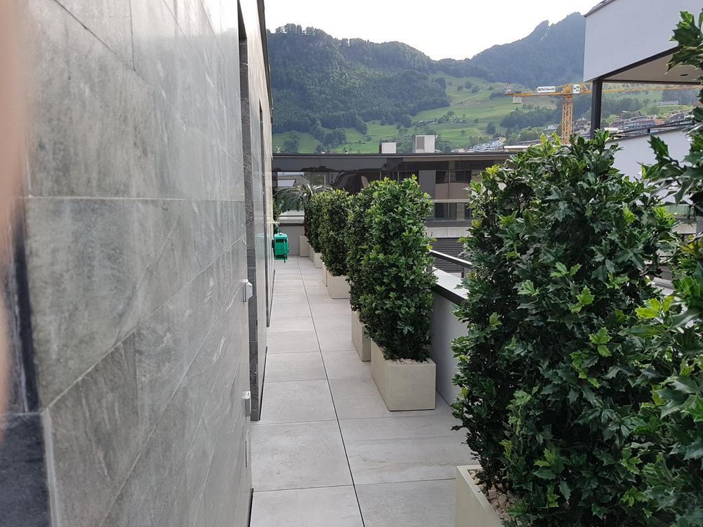 Terrassengestaltung mit immergrünen Heckenpflanzen.