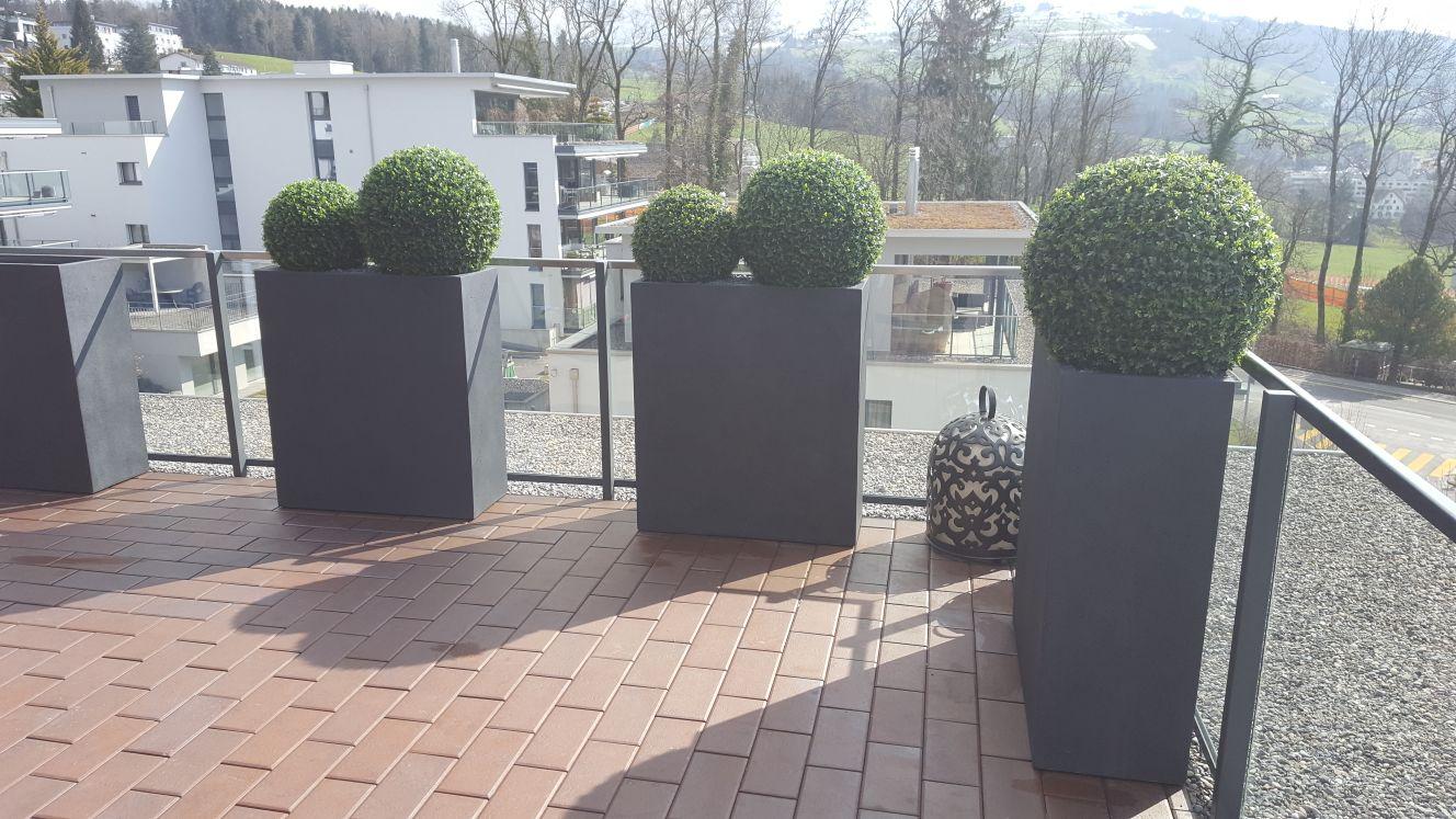 Terrassengestaltung mit Buchskugeln in hohen Pflanzkübel.