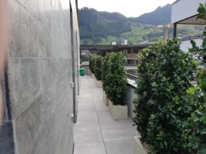 terrassengestaltung mit outdoor kunstpflanzen dekohaus innenbegr nung und aussenbegr nung. Black Bedroom Furniture Sets. Home Design Ideas