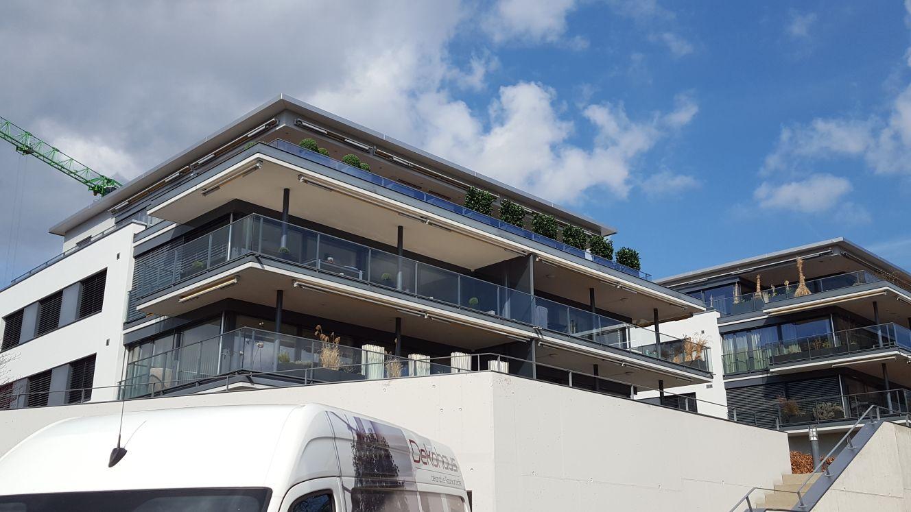 Terrassenwohnungen mit immergrünen Heckenpflanzen begrünt.