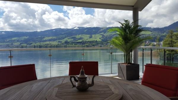 Wetterfeste Areca Palme auf Balkon an einem See.