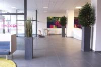 Begrünung Innen mit hochwertigen Kunstpflanzen.