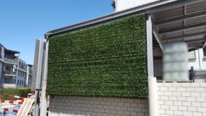 buchs wandbegr nung outdoor premium kunstpflanzen dekohaus ag. Black Bedroom Furniture Sets. Home Design Ideas