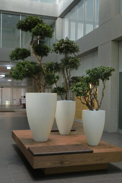 Begrünung Innen mit exklusiven Kunstbäume in hohen Pflanzgefässe.
