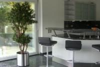 Raumbegrünung mit exklusiven Kunstbaum in Wohnzimmer.