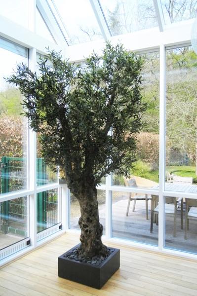 Begrünung Innen in Wohnzimmer mit grosser, künstlicher Olivenbaum.