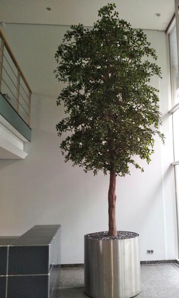 Grosser xxl Kunstbaum als Bepflanzung Innen an einem Empfang.