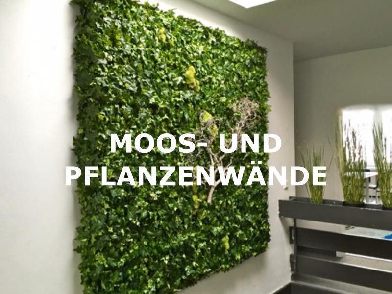 Begrünung mit Moos- und Pflanzenwände als Wandbegrünung.